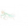07064308s 昆虫と恐竜(彩色)③